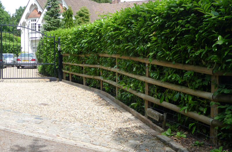 Post Amp Rail Fencing In Surrey Caterham Fencing